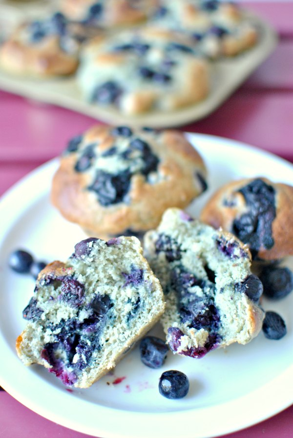 Protein Packed Blueberry Muffins recipe