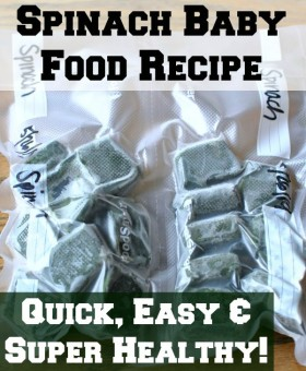 homemade spinach baby food recipe